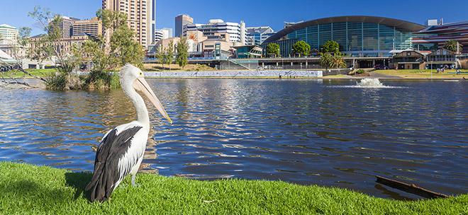 Аделаида, Австралия - отдых, погода, отзывы туристов, фотографии